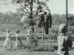 The only monkey bars in town - News - Bubblews
