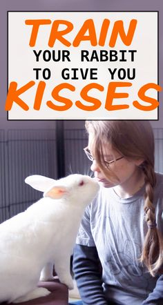 Rabbits are very intelligent animals. You can train then to do a number of cute tricks, including how to give you kisses. This is a really fun way to bond with your rabbit. 4 Tricks to Teach Your Rabbit: A Step-By-Step Guide The Bunny Lady amybunny Pet Bunny Rabbits, Pet Rabbit, Funny Rabbit, Bunny Hutch, Indoor Rabbit, Bunny Cages, Raising Rabbits, Cute Baby Bunnies, Pocket Pet