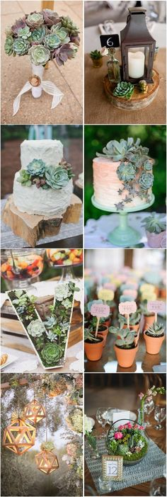 Succulent rustic wedding ideas. You can't go wrong!