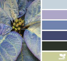Beautiful Color Combinations, Color Combos, Color Schemes, Colour Pallette, Color Palate, Design Seeds, Color Stories, Color Swatches, Color Theory