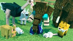 Minecraft Mods - MORPH HIDE AND SEEK - Mo' Creatures Mod