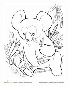 "This cuddly koala is waiting for some color! Pick up some crayons and wonder what other animals live ""down under"" in Australia."