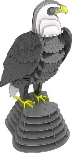 Bald Eagle Standing Proud