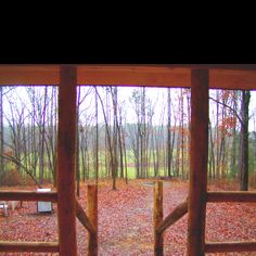 Arkansas cabin view