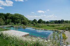 Natüricher Swimming-Teich mit Blick in den Wienerwald