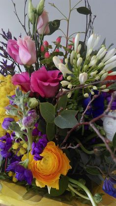 Spring Flowers Ranunculus, Agapanthus, Anemones Anemones, Ranunculus, Agapanthus, Spring Flowers, Garden Design, Plants, Persian Buttercup, Backyard Landscape Design, Yard Design