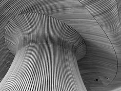 Senedd ceiling. Cardiff, Dec 2010. Mushroom. Metallic Prints, Geometric Lines, Love Design, Gradient Color, Architecture Details, Textures Patterns, Abstract, Twitter, Art