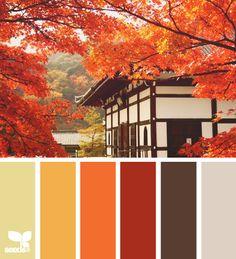 смесь цветов Фимо профессионал