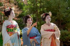 A blog about the maiko and geiko of Kamishichiken