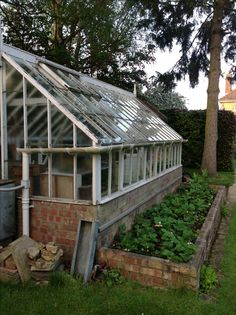 Strawberry bed attached to our green house...