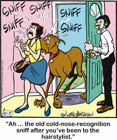 marmaduke guys Bing helps you turn information into action, making it faster and easier to go from searching to doing.