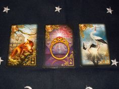 Group Reading for 2-9-17  Gilded Reverie Lenormand  FOX + RING + STORK : Message for the day  Being alert and on your toes can bring an improvement and lead to a positive outcome.  Click here www.kcrcounseling.com for an insightful session with Kathleen Robinson.