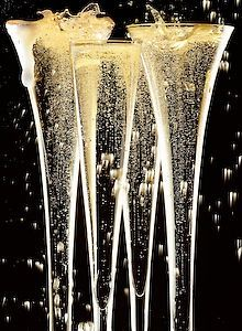 New Year's Eve*Too much of anything is bad But Too Much CHAMPAGNE Is Just Right. -Mark Twain
