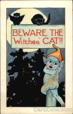 Beware the Witches' Cat!!