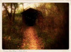 Cemetery Road bridge outside Yellow Springs, OH   - Fall color #coveredbridge
