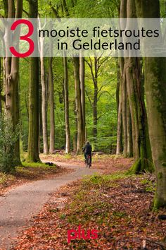 Cycling Holiday, Netherlands, Holland, Trail, Beautiful Places, Hiking, Country Roads, Camping, Earth