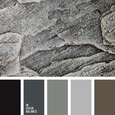 driftwood inspired color schemes - Google Search