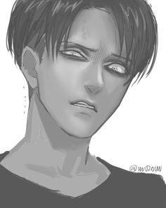 Hanji: Levi look at all that DIRT crazy isn't it. this is NOT a sanitary environment I'll go get my cleaning supplies before I throw up, specifically on YOU Hanji Levi Ackerman Levi Mikasa, Levi And Erwin, Levi Ackerman, Kuroko, Japon Illustration, Rivamika, Levihan, Eruri, Attack On Titan Anime