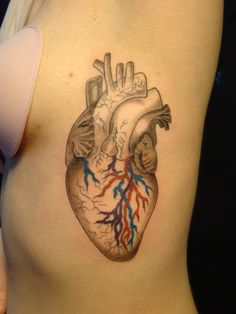 tattoo anatomical heart - Google Search