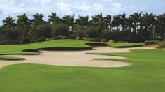 - Known for our sundrenched greens, The Tiburón Golf Course at The Ritz-Carlton Golf Resort, Naples is considered one of the finest in Florida.