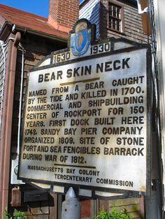 Alexandra D. Foster Destinations Perfected: Bear Skin Neck