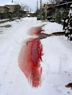 That'll be my blood in the street one day.