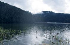 普达措国家公园 Pudacuo National Park