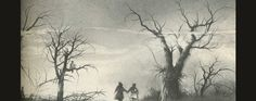 Pretty much all I remember of Scary Stories To tell In The dark were the illustrations by Stephen Gammell. Haunting and terrifying. I still love/hate them.