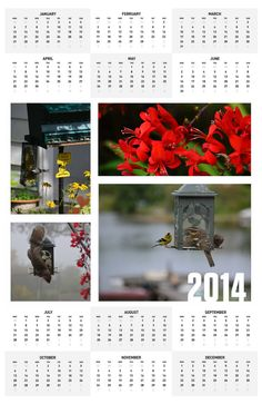 Bird Calendar:   Design your own poster, canvas print, photo album or personal card on line using your photos or use a pre-made template! It will be printed, stamped and mailed for you! Easy as 1,2,3! Retail or Wholesale www.PixByMarlys.com