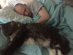 What I mean when I say the Dude is a big cat. Happy Caturday.