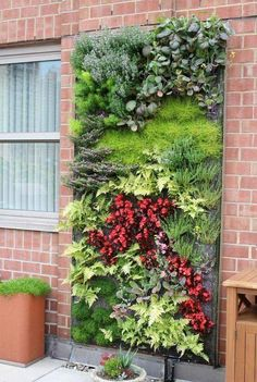 One beautiful piece of living garden art! I WILL do this!! #hydroponicgardening