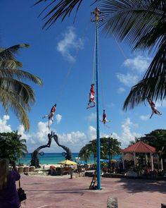 """fotomed12: """"#botanical #natural #sinfiltro #mexico #tepoztlan #fotografia #naturals  #naturelovers #nature_perfection #México #colombia #océano #botanical #natural #sinfiltro #mexico #tepoztlan #fotografia #naturals  #naturelovers #nature_perfection #instagood  #cenote #cenotes #selvacancun #cancun  #laRiveramaya #playadelcarmen  #maya #losmayas #culturamaya #dance #memories"""""""