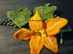 zelicroches: PAP flor da abóbora