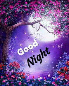 Good Night For Him, Good Night Prayer, Cute Good Night, Good Night Friends, Good Night Blessings, Good Night Gif, Good Night Wishes, Good Night Sweet Dreams, Good Night Love Pictures