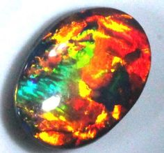 GEM QUALITY BLACK SOLIDOPAL LIGHTNINGRIDGE 1.75 CTS JJ-15