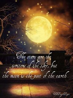 ~ The Pagan Poppet