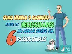 Como ensinar o cão fazer necessidades no Lugar Certo - http://www.caesmania.com.br/como-ensinar-o-cachorro-fazer-as-necessidades-no-lugar-certo