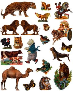 This weeks free clip art is animals from  Dover Publications