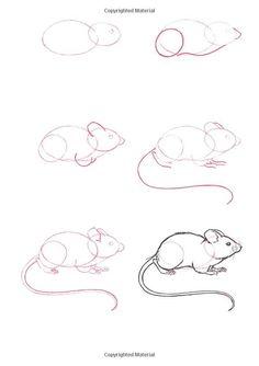 Kresba zvierat ktorú hravo zvládneš | Kreslenie.sk
