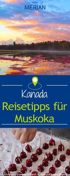 The Muskokas, so nennt sich die von tausenden kleinen Seen, Flüssen und Wasserfällen, durchzogene Region in Ontario Kanada. Wir zeigen Ihnen unsere Reisetipps für die Muskokas!