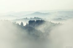 Kilian_Schoenberger_The_Fog (7)
