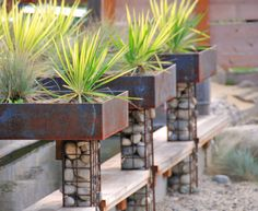 Stacked stoned-filled gabions for decoration