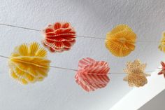 Well here it is, the Cupcake Liner Pom Pom Garland DIY I promised you (the name needs some work). This project was very fun to make and has...