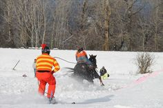 """For hundreds of years skijoring or """"ski driving"""" has been a part of Scandinavian life, but the unique winter sport didn'ttake hold in the U.S. untiltroops trained in mountain and winter warfare returned home from World War II.Traditionallydogs were used to pull people on """"wooden boards,"""" but modern-day skijorers use horses, dogs, even reindeer to [...]"""