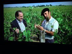 Super leuk tv programma Wijn aan Gort.