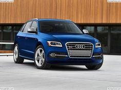 Audi SQ5 3.0 TFSI (2014)