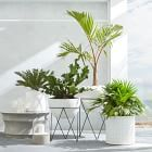Best patio decorating ideas for A backyard guide to the essentials to make your outdoor space inviting, comfortable and functional. Read our expert tips for the perfect outdoor patio space. For more patio ideas go to Domino. Plantas Indoor, Decoration Plante, Diy Planters, Planter Ideas, Modern Planters, White Planters, Outdoor Planters, Hanging Planters, Interior Plants