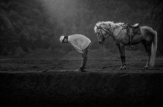 """Pray"": Winner From The 2015 Sony World Photography Awards"