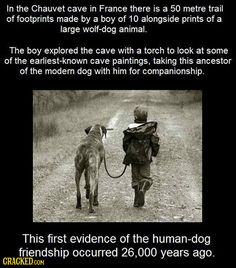 21 Mind-Blowing Facts That Will Put a Smile On Your Face | Cracked.com