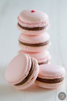 French macarons, made using the Italian Meringue Method, are filled with a chocolate buttercream and a maraschino cherry. These chocolate cherry French Macarons are the perfect way to jazz up a chocolate covered cherry! Macaroon Filling, Macaroon Cookies, French Macaron Filling, Shortbread Cookies, French Macaroon Recipes, French Macaroons, Macaron Flavors, Macaron Recipe, Baking Recipes
